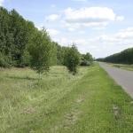 Дорога в Ленинское
