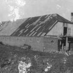 Свинарник. 1924 год.