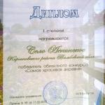 Диплом победителя конкурса 'Самая красивая деревня'