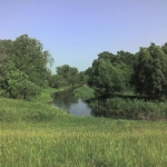Летом на Вороне