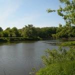 Река Ворона