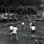 Волейбол. Мяч в игре