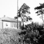 Дом Кедровых